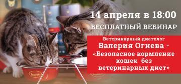 Приглашаем на бесплатный вебинар «Безопасное кормление кошек без ветеринарных диет»