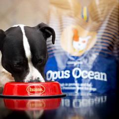 Opus ocean 2 кг