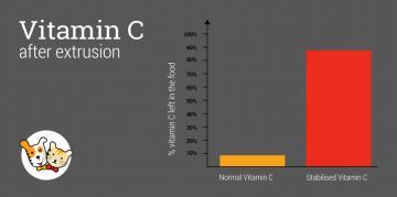 ¿Qué fuente de vitamina C es la mejor?
