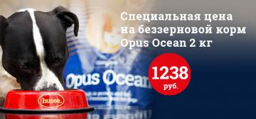 Акция на Opus Ocean 2 кг