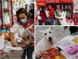 Husse Ucrania y República Checa asisten a exposiciones caninas por primera vez después de la cuarentena