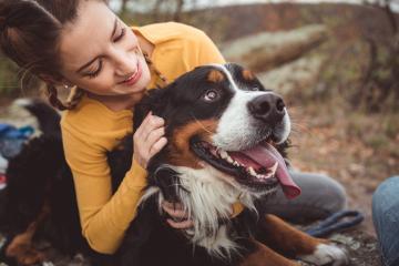 Чи слід дозволяти нашим собакам лизати нас?