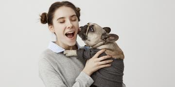 Esperanza de vida del bulldog francés