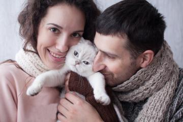 Adopción de gatos. Factores a tener en cuenta