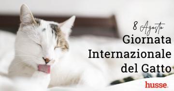 8 agosto Giornata Mondiale del Gatto