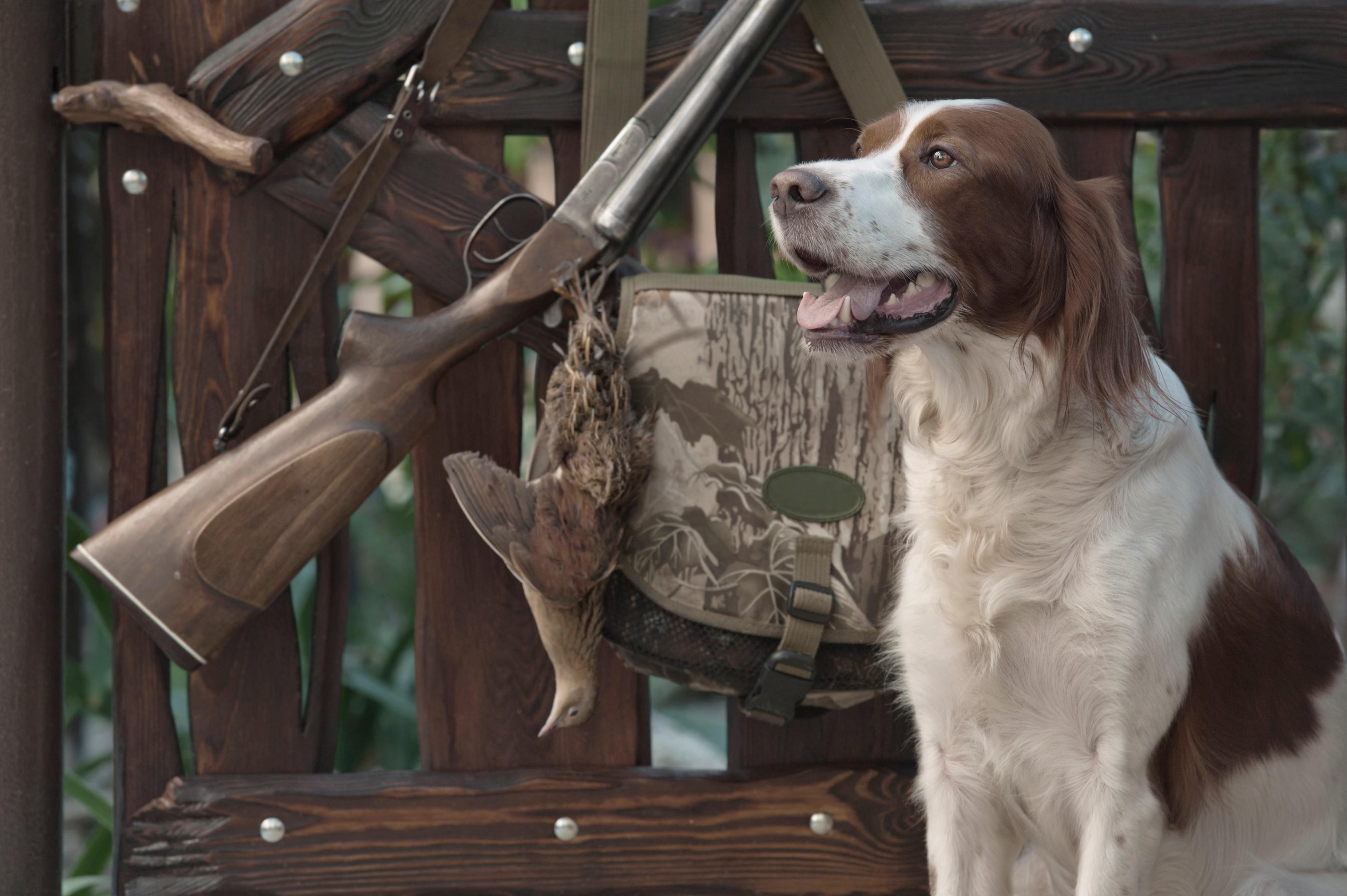 Jagen ist sein Leben