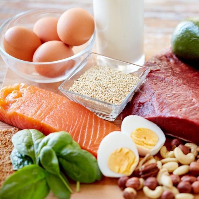 Bílkoviny v krmivu: jak se měří jejich kvalita?