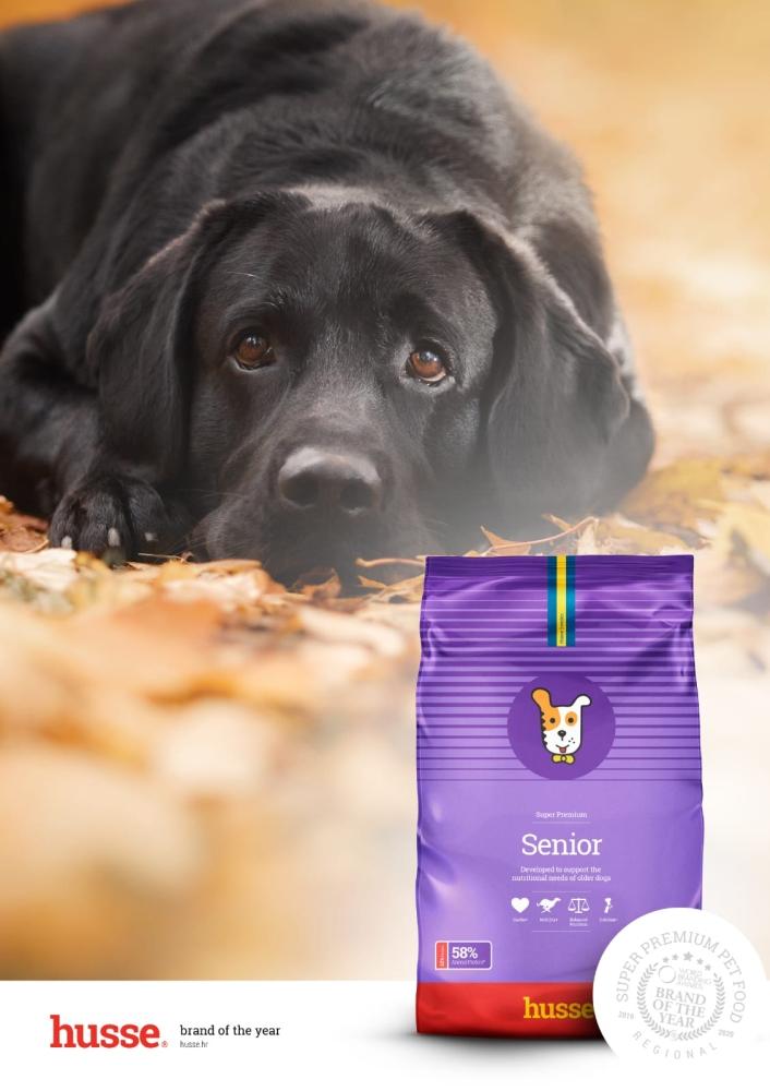 senior hrana za pse super premium kvalitete