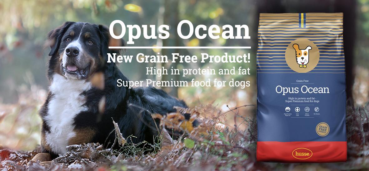 Opus Ocean Banner