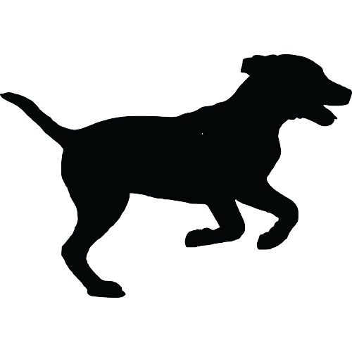 Active Dog Vector