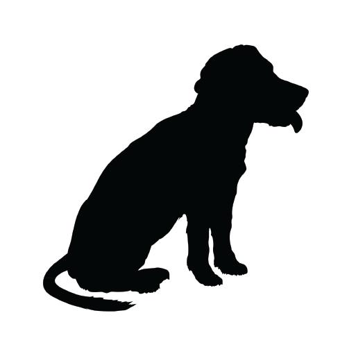Allergic Dog Vector