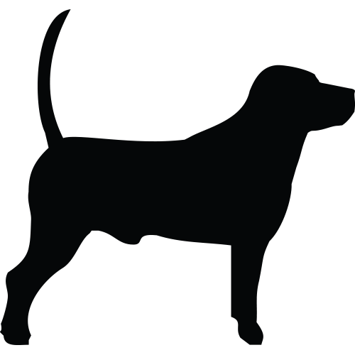 Normal Dog Vector