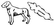 Underweight Dog Vector