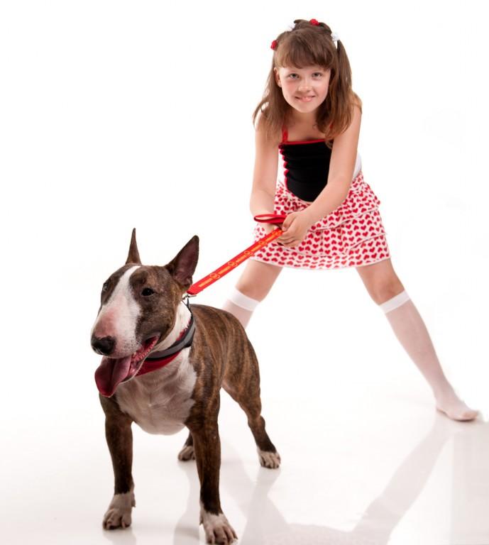 Собака в семье: психология взаимоотношений