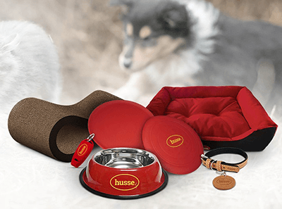 accessoire pour chien husse