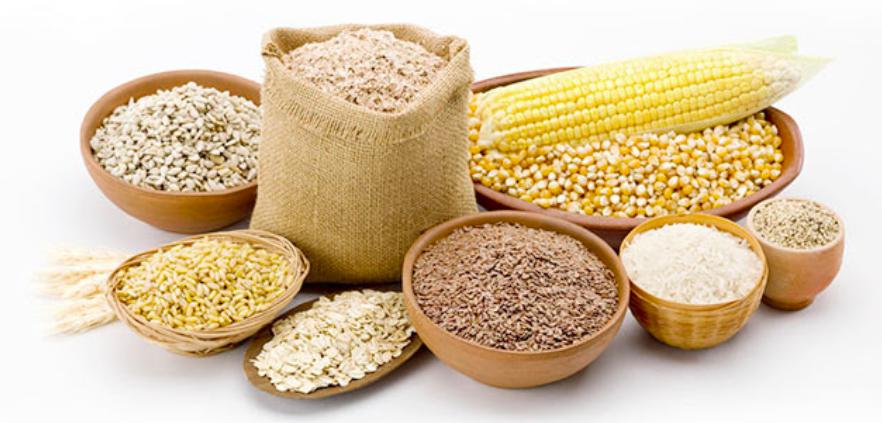 céréales nourriture pour animaux de compagnie