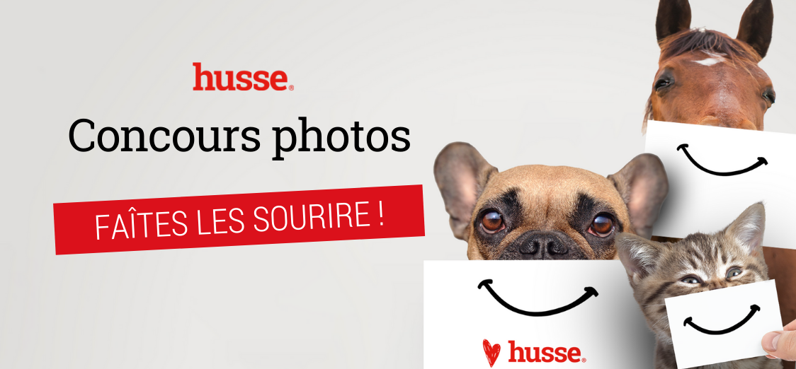 concours photo chien chat cheval Husse