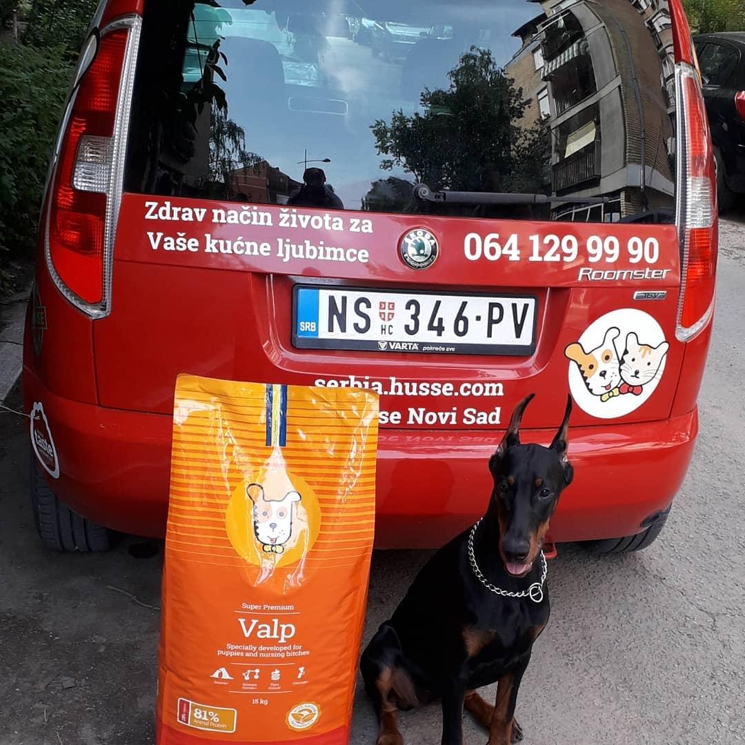nourriture pour chiot et chiennes allaitantes husse