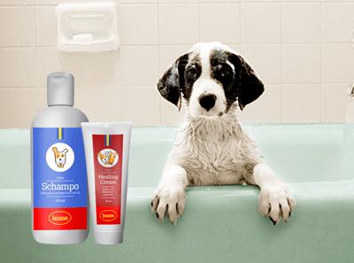 toilettage et produits de soin pour chien husse