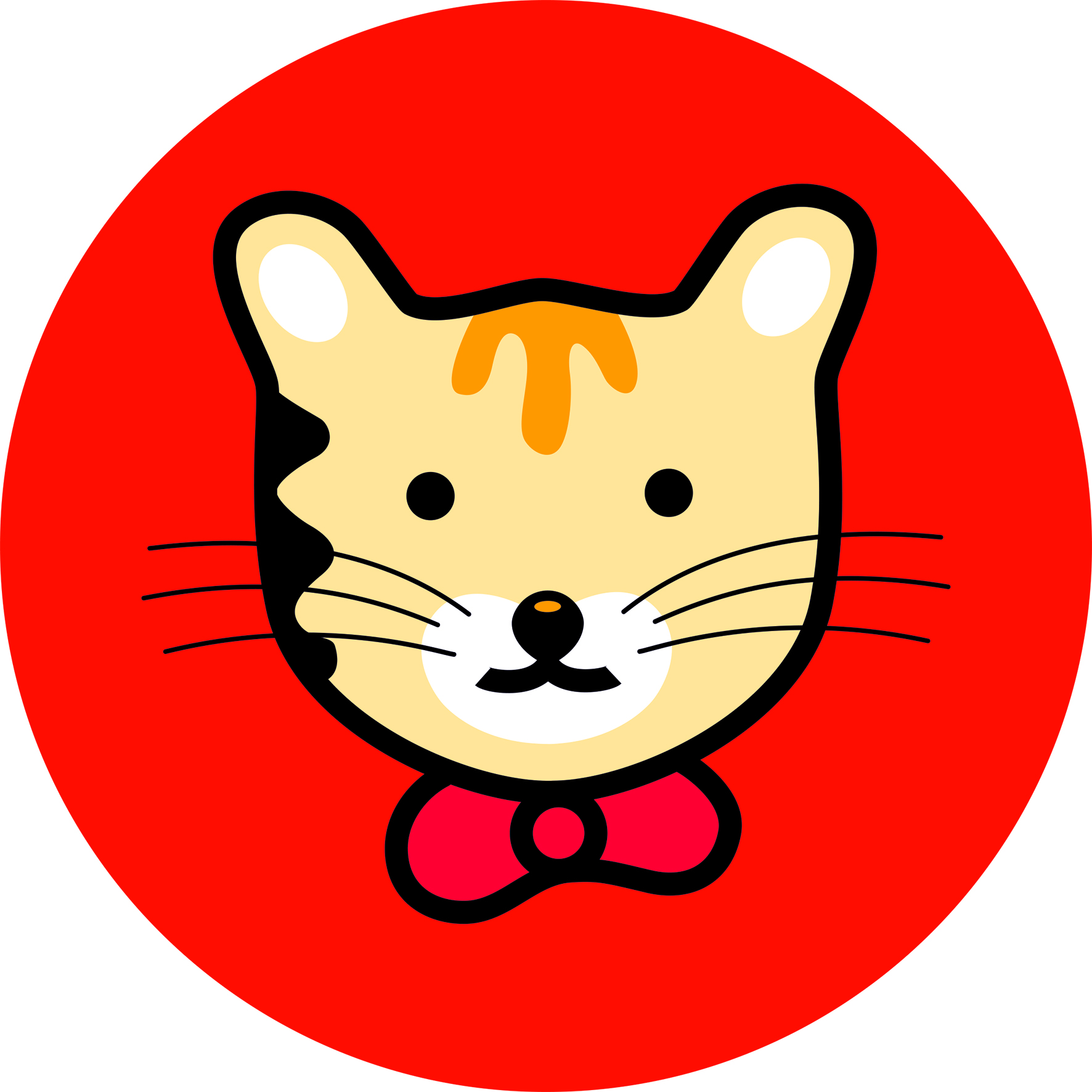 Husse Cat