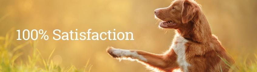 ¡Ofrecemos una garantía de satisfacción del cliente 100%!